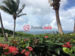 居外网在售美属维京群岛3卧2卫的房产总占地3157平方米USD 525,000