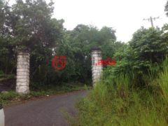 牙买加圣安妮的房产