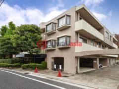日本的房产