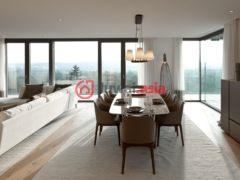 奥地利维也纳2卧2卫的房产