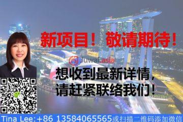 东北地区房产房价_新加坡房产房价_居外网在售新加坡1卧1卫新开发的房产总占地37991平方米