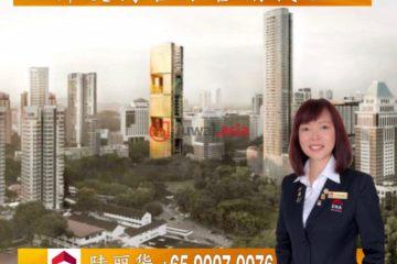 新加坡4卧6卫的房产