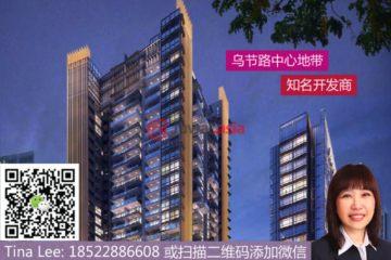 中星加坡房产房价_新加坡房产房价_居外网在售新加坡1卧1卫新开发的房产总占地55平方米SGD 1,420,000