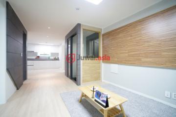 韩国首尔3卧1卫新房的房产