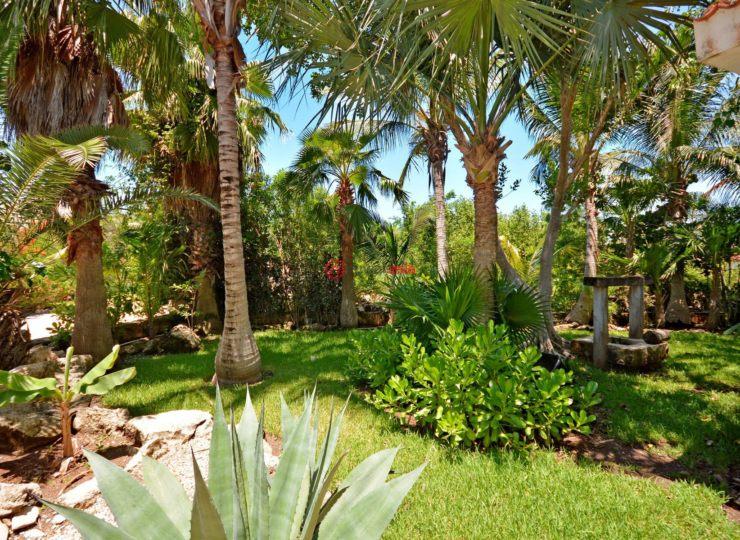墨西哥金塔纳罗奥卡门海滩的房产,Grand Home in a beachfront gated community Playa Paraiso Lot 49,编号36814846