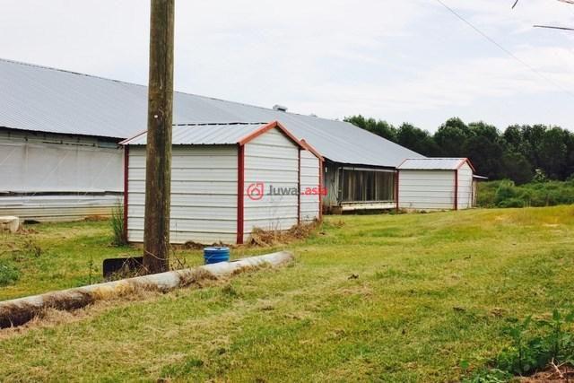 美国密西西比州芒特奥利弗的新建房产,292 Arbo Road,编号34977410